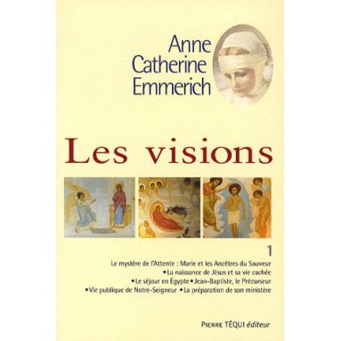 Les Visions - Tome 1