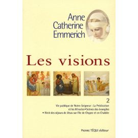 Les Visions - Tome 2