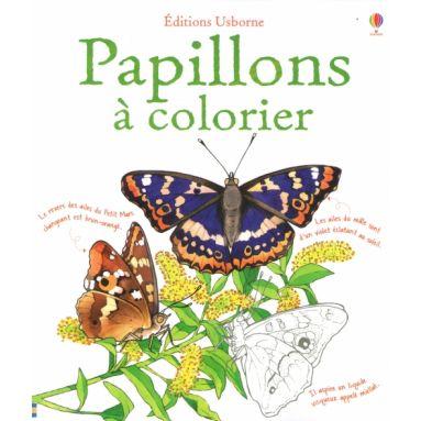 Papillons à colorier