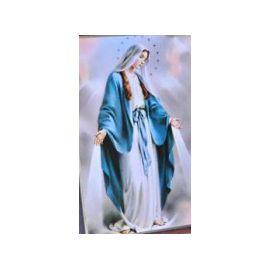 Notre Dame de la Médaille Miraculeuse