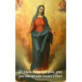 La Vierge Immaculée de Giuseppe Rollini - CB1145