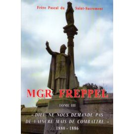 Mgr Freppel - Tome 3