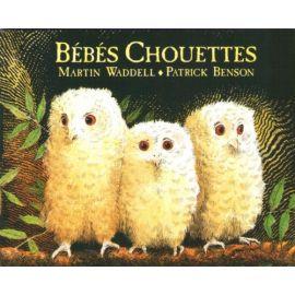 Bébés Chouettes