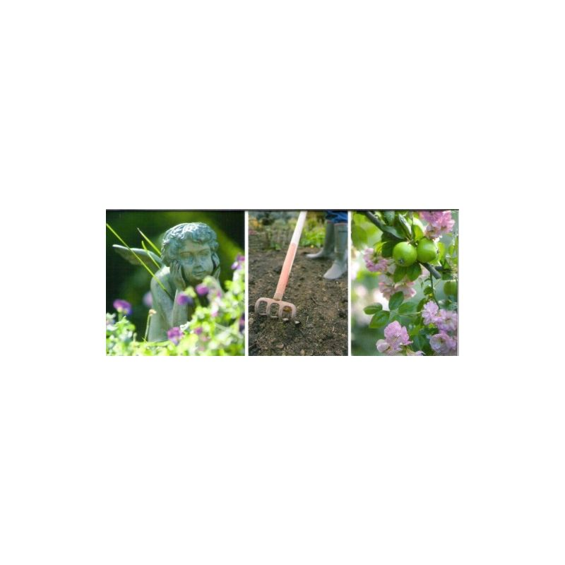 Alain baraton l 39 encyclop die du jardin livres en famille for Jardin l encyclopedie