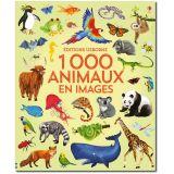 1000 animaux en images