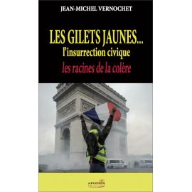 Les Gilets Jaunes... l'insurrection civique
