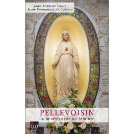 Jean-Baptiste Edart - Pellevoisin la miséricorde au féminin