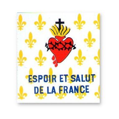 Lettre ouverte au président de la république Drapeau-fleurs-de-lys-et-sacre-coeur