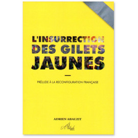Adrien Abauzit - L'insurrection des Gilets Jaunes