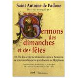 Sermons des Dimanches et des Fêtes - Tome III