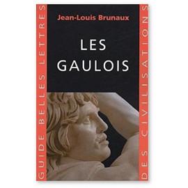 Jean-Louis Brunaux - Les Gaulois
