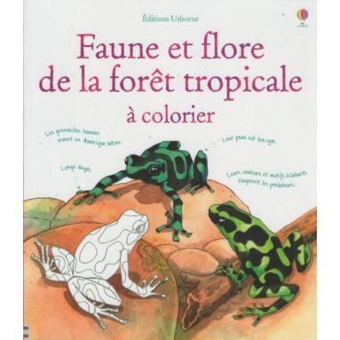 Faune et Flore de la forêt tropicale à colorier