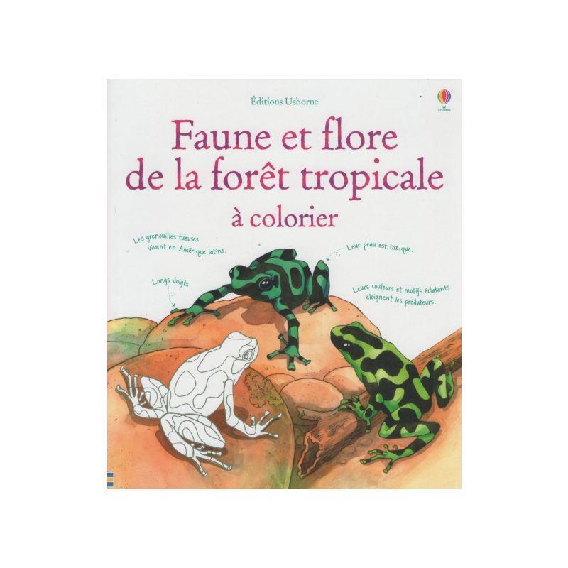 Coloriage Feu De Foret.Jenny Cooper Faune Et Flore De La Foret Tropicale A Colorier