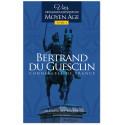 Bertrand Du Guesclin connétable de France