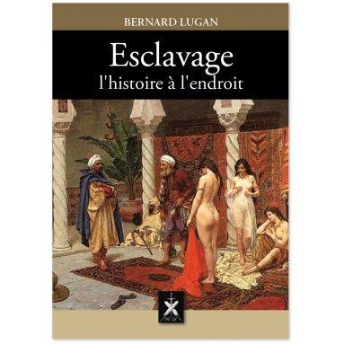 Bernard Lugan - Esclavage l'histoire à l'endroit