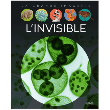 Christine Sagnier - L'invisible