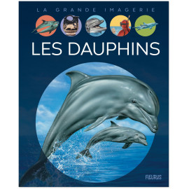 Stéphanie Redoulès - Les dauphins