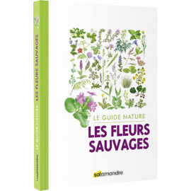 Sophie Giriens - Les Fleurs sauvages