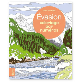 David Woodroffe - Evasion - Coloriage par numéros