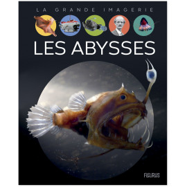 Laure Cambournac - Les Abysses