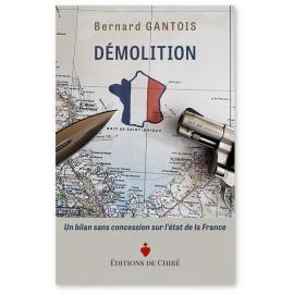 Bernard Gantois - Démolition - Un bilan sans concession sur l'état de la France