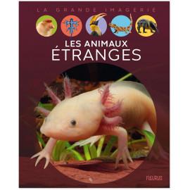 Elisabeth Dumont-Le Cornec - Les animaux étranges
