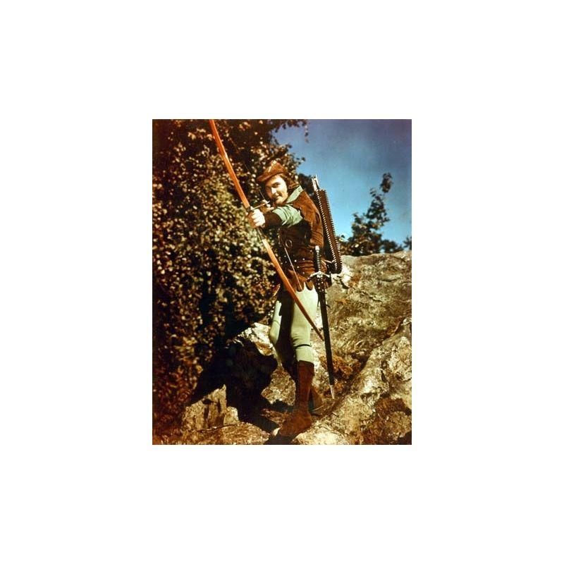 michael curtiz   les aventures de robin des bois