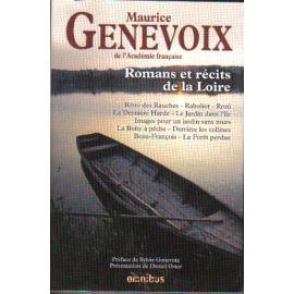 Romans et récits de la Loire