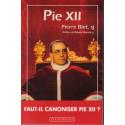 Pie XII - Faut-il canoniser Pie XII ?