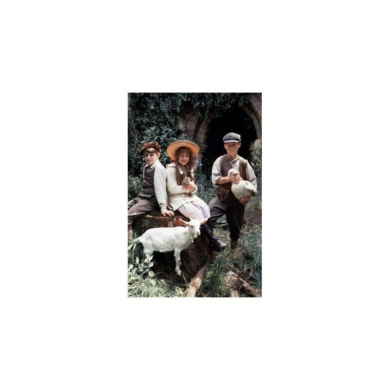 Francis ford coppola le jardin secret livres en famille for Le jardin secret film