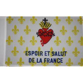 Drapeau Fleur de lys - Espoir et salut de la France